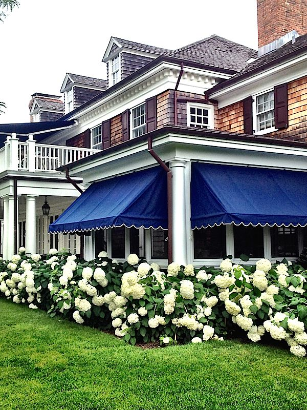 blue awnings