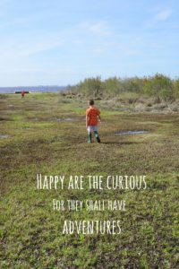 Happy are the curious